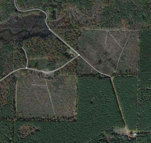 0 Chaylebeate Springs Road, Plain Dealing, LA 71064 (MLS #14571990) :: All Cities USA Realty