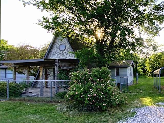 141 Tweety Bird Lane, Whitewright, TX 75491 (MLS #14572121) :: Real Estate By Design