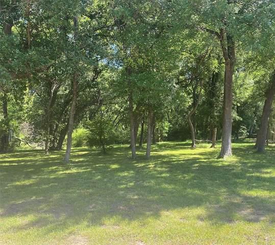 2208 Bluff Court, Cedar Hill, TX 75104 (MLS #14572195) :: The Barrientos Group