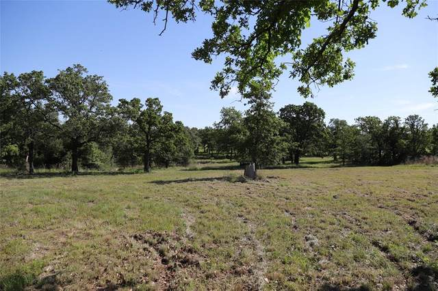 587 Indian Springs Road, Springtown, TX 76082 (MLS #14572665) :: The Mauelshagen Group