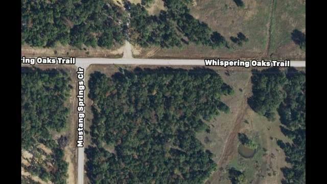 17717 Mustang Spring Circle, Sunset, TX 76270 (MLS #14572772) :: RE/MAX Landmark