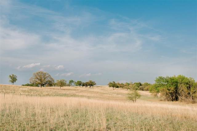 TBD 84 Latigo Way, Weatherford, TX 76088 (MLS #14573335) :: The Mauelshagen Group