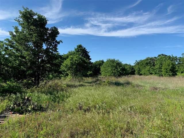 TBD Kite Road W, Mineral Wells, TX 76067 (MLS #14573404) :: The Mauelshagen Group