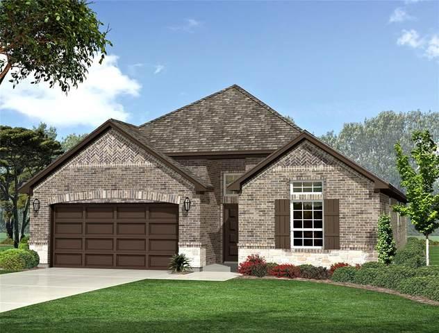 641 Grove Park Lane, Midlothian, TX 76065 (MLS #14573431) :: Frankie Arthur Real Estate