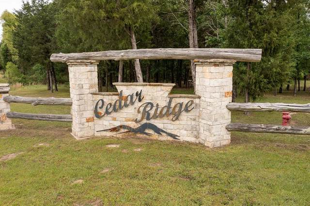 1180 Hwy 276 Drive, Emory, TX 75440 (MLS #14573450) :: The Russell-Rose Team