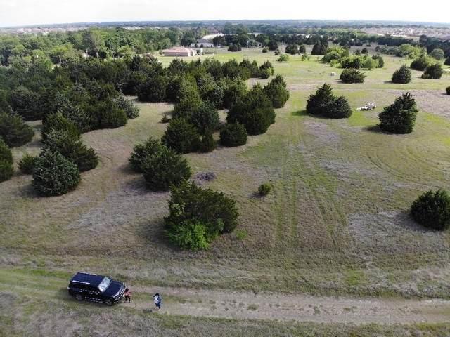 323 Green Mound Drive, Glenn Heights, TX 75154 (MLS #14573886) :: Team Tiller