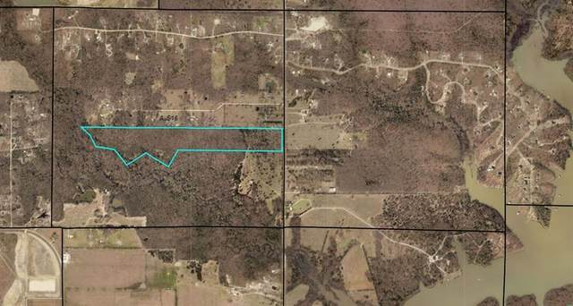 000 TBD Fm 2101, Quinlan, TX 75474 (MLS #14574021) :: The Kimberly Davis Group