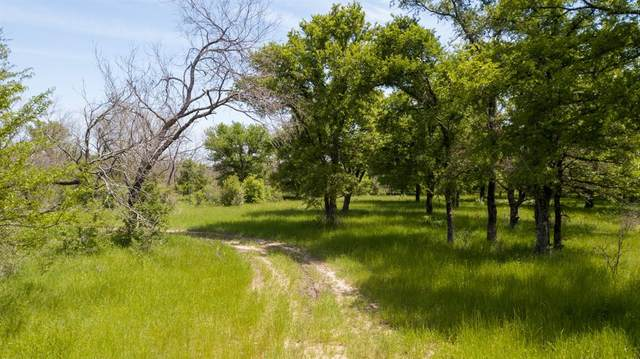 TBD Gafford Lane, Jacksboro, TX 76458 (MLS #14574035) :: Team Tiller