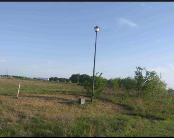 1143 Deerfield Drive, Wills Point, TX 75169 (MLS #14574134) :: VIVO Realty