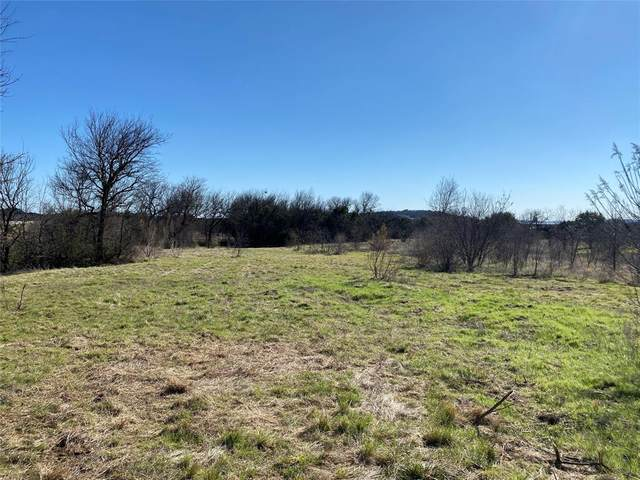 Lot1035 Cinnamon Teal Court, Possum Kingdom Lake, TX 76449 (MLS #14574291) :: Real Estate By Design