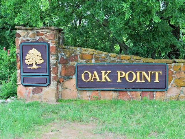 TBD Oak Point Drive, May, TX 76857 (MLS #14574808) :: Team Hodnett
