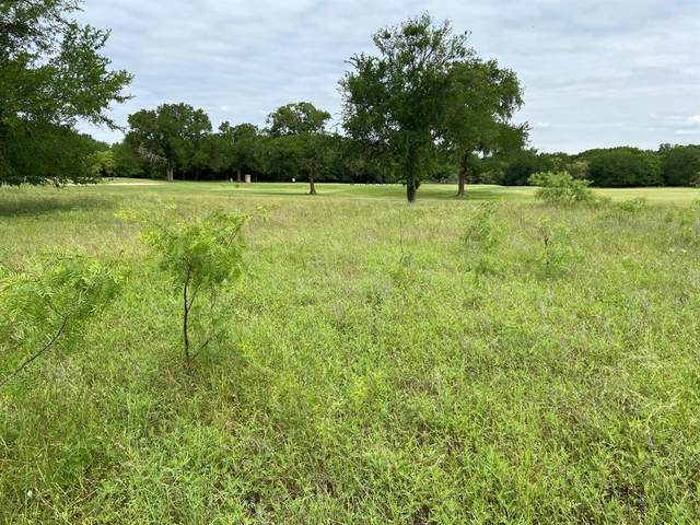 17025 Trailwood Drive, Whitney, TX 76692 (MLS #14575035) :: The Mitchell Group