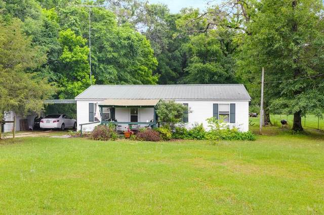 281 Rs County Road 4252, Point, TX 75472 (MLS #14575062) :: VIVO Realty