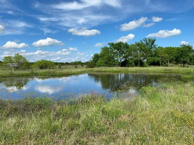 10.2 Ac S Fm 372, Valley View, TX 76272 (MLS #14575207) :: VIVO Realty