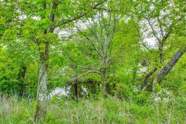 TBD Wagon Wheel Dr, Gainesville, TX 76240 (MLS #14575317) :: Real Estate By Design