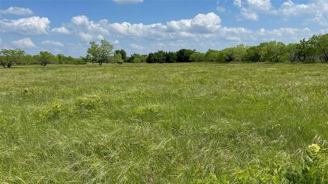 Lot 12 County Road 2582, Royse City, TX 75189 (MLS #14575986) :: Real Estate By Design