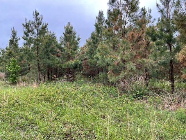 0000 State Highway 37, Quitman, TX 75783 (MLS #14576281) :: Real Estate By Design