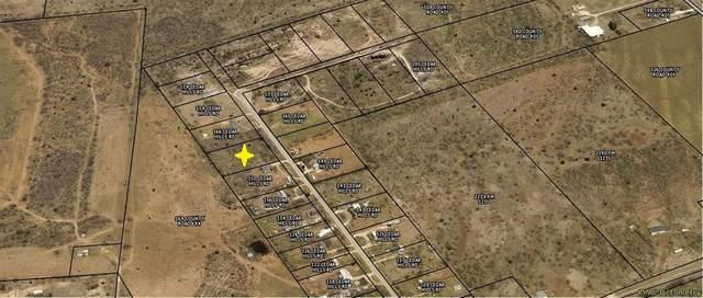 TBD Cedar Hills Road, Merkel, TX 79536 (MLS #14577004) :: The Good Home Team