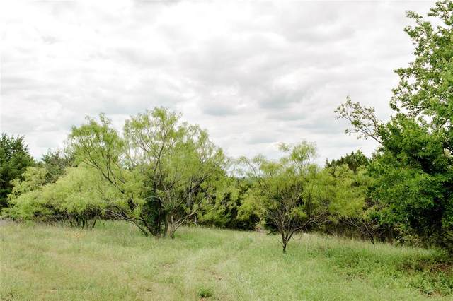 TBD 2 Ox Mill Creek Road, Weatherford, TX 76087 (MLS #14577385) :: The Mitchell Group