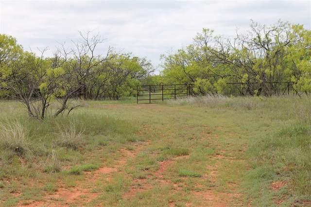 TBD 1 County Road 176, Ovalo, TX 79541 (MLS #14577436) :: The Tierny Jordan Network