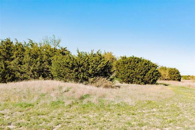 TBD- 94 E Stagecoach Trail, Weatherford, TX 76085 (MLS #14577777) :: The Mitchell Group