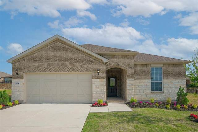 1004 Old Glory Drive, Little Elm, TX 76227 (MLS #14577973) :: Robbins Real Estate Group