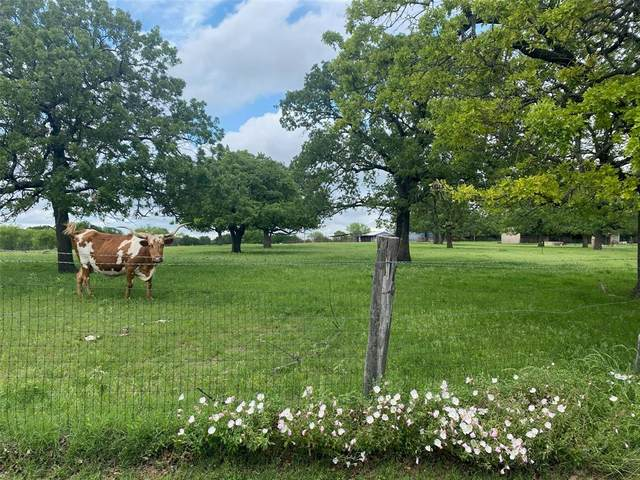244 County Road 3250, Decatur, TX 76234 (MLS #14579137) :: Robbins Real Estate Group