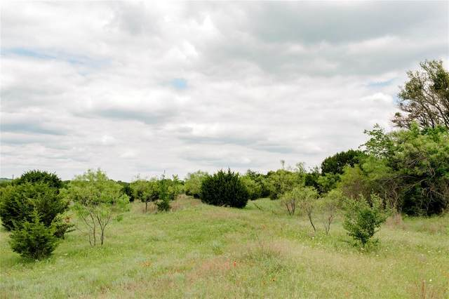 TBD 5 Ox Mill Creek Road, Weatherford, TX 76087 (MLS #14579143) :: Premier Properties Group of Keller Williams Realty