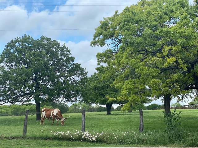 244 County Road 3250, Decatur, TX 76234 (MLS #14579186) :: Robbins Real Estate Group