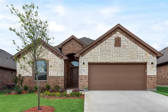 127 Wagon Mound, Waxahachie, TX 75167 (MLS #14579836) :: Real Estate By Design