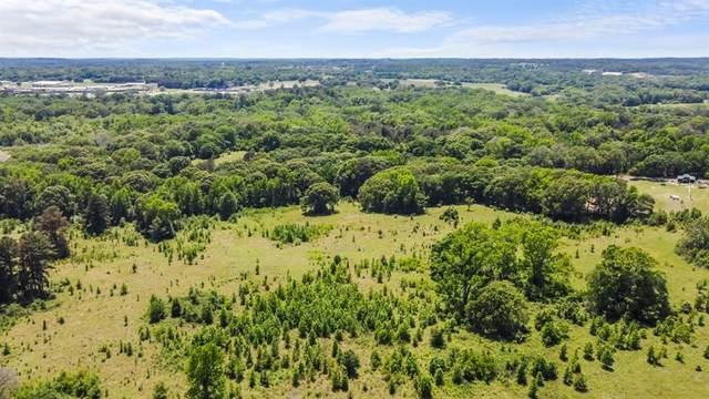 TBD W Peninsula Road, Whitehouse, TX 75791 (MLS #14579955) :: Real Estate By Design