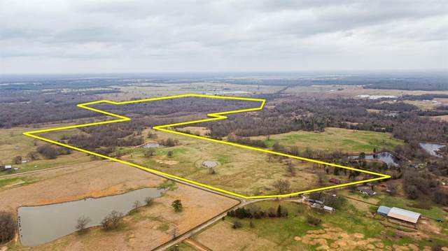 TBD County Road 1165, Mount Pleasant, TX 75455 (MLS #14580008) :: Real Estate By Design