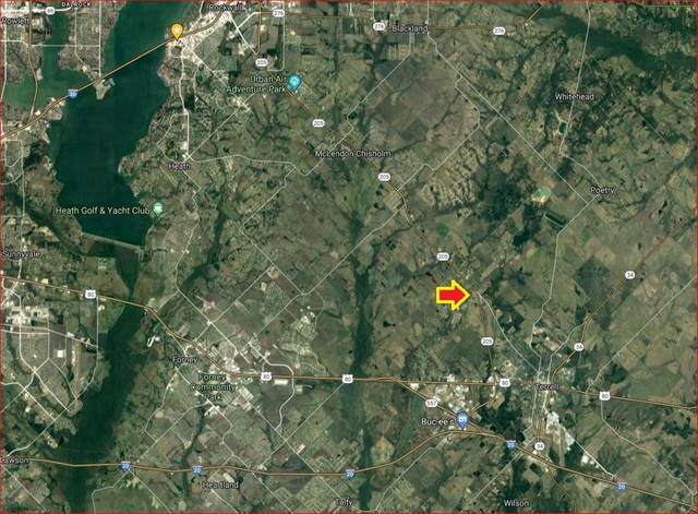 15025 State Highway 205, Terrell, TX 75160 (MLS #14580034) :: Real Estate By Design