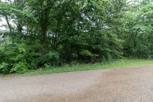 TBD Lonely Ln, Chandler, TX 75758 (#14580166) :: Homes By Lainie Real Estate Group