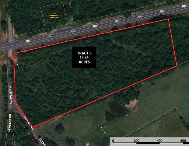 TBD Hwy 155 & Verbena, Ore City, TX 75683 (MLS #14580216) :: Robbins Real Estate Group