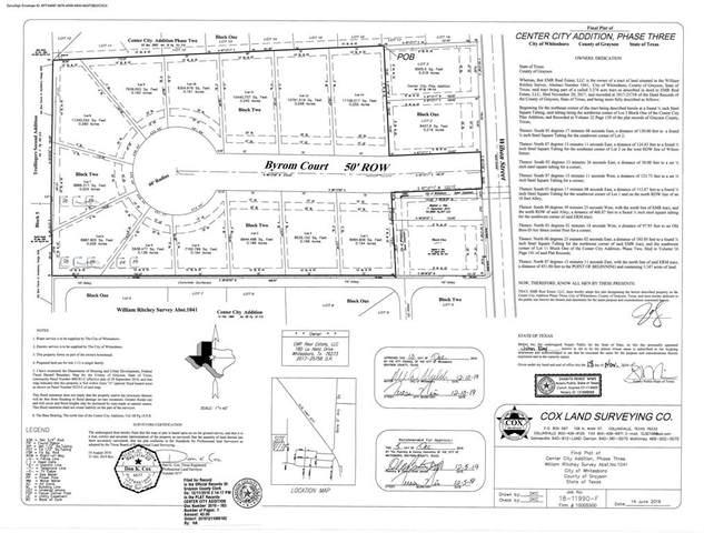 111 Byrom Court, Whitesboro, TX 76273 (MLS #14580471) :: The Good Home Team
