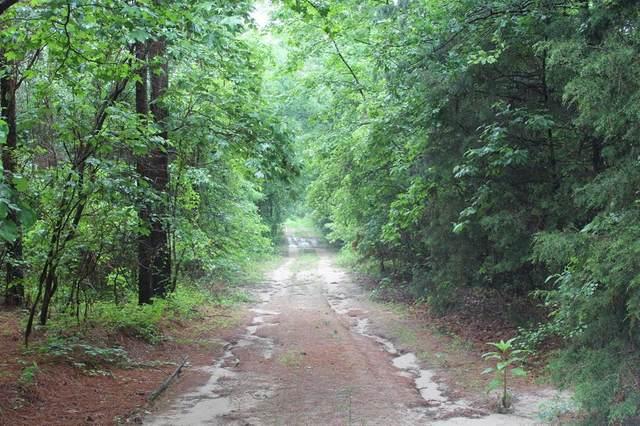 TBD County Road 4531, Winnsboro, TX 75494 (MLS #14581943) :: Craig Properties Group