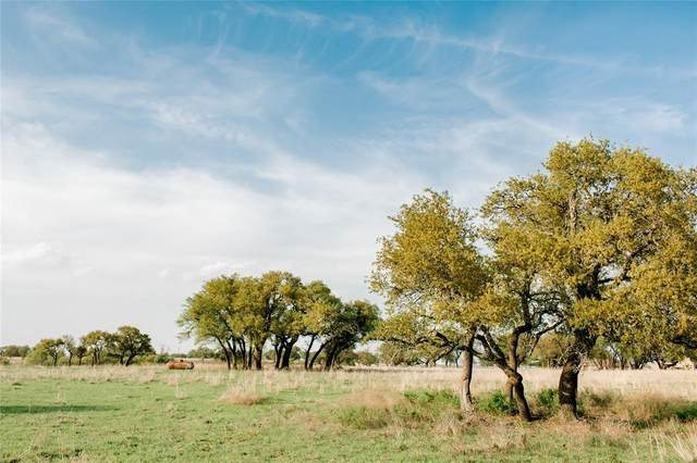 TBD 86 Latigo Way, Weatherford, TX 76088 (MLS #14582101) :: Real Estate By Design