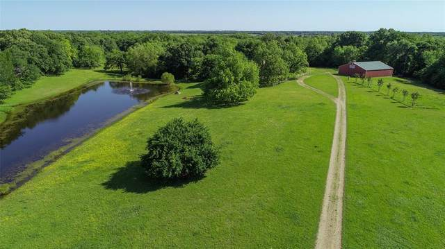 1268 County Road 3080, Ben Franklin, TX 75415 (MLS #14582327) :: Real Estate By Design