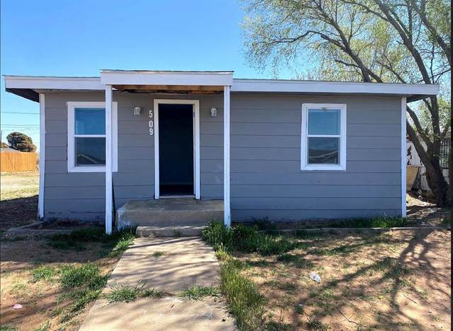 509 Lindy Avenue, Odessa, TX 79761 (MLS #14582902) :: The Property Guys