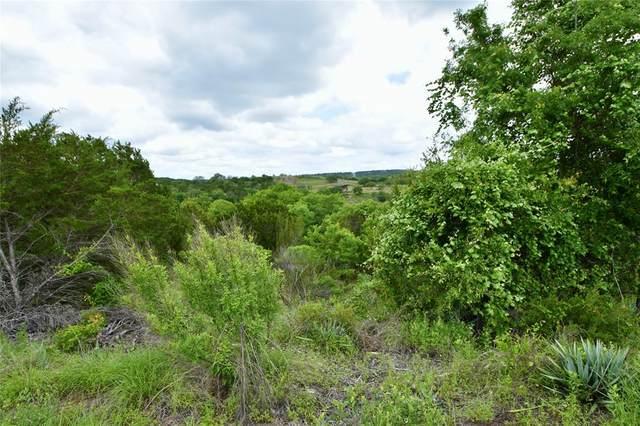 3030 Beacon Lake Drive, Bluff Dale, TX 76433 (MLS #14583832) :: VIVO Realty