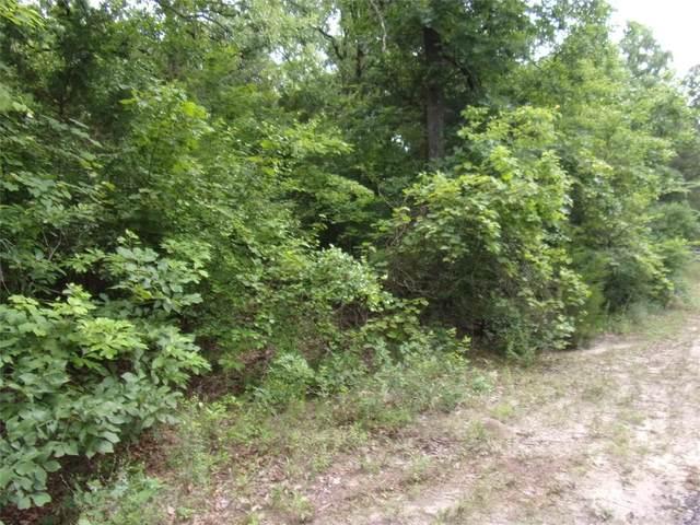 tbd Timber Grove, Murchison, TX 75778 (MLS #14584003) :: The Daniel Team