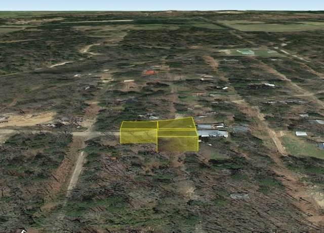 218 Sandpiper Drive, Winnsboro, TX 75494 (MLS #14584380) :: Craig Properties Group