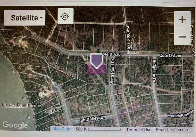 Lot 254 Vista Pointe Drive, Chico, TX 76431 (MLS #14584464) :: VIVO Realty