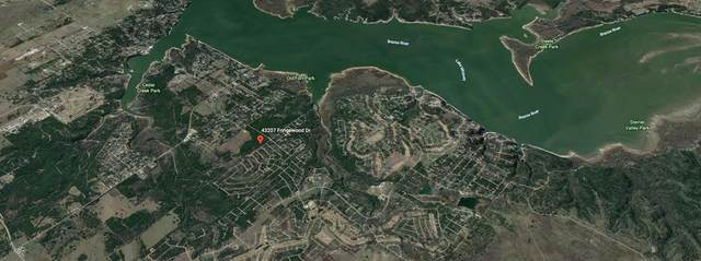 43207 Fringewood Drive, Whitney, TX 76692 (MLS #14584907) :: Real Estate By Design