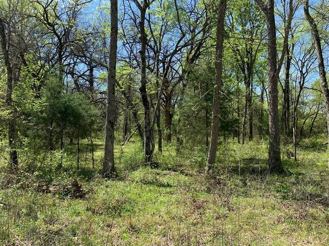 Lot 19 County Rd 4106, Greenville, TX 75401 (MLS #14585490) :: The Good Home Team