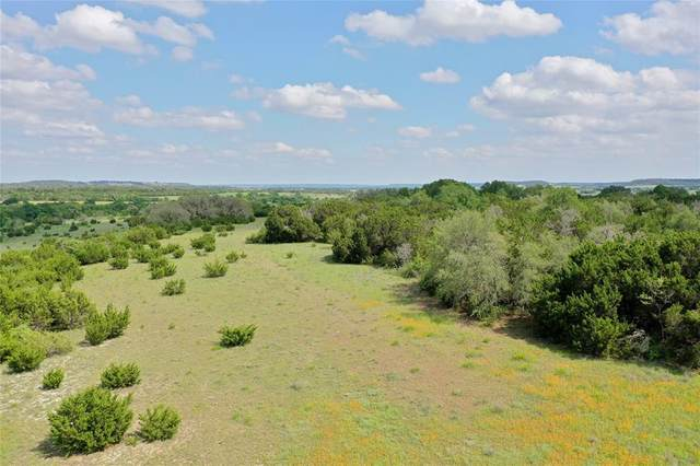 2139 County Road 228-13, Hico, TX 76457 (MLS #14586447) :: Real Estate By Design