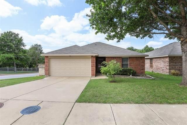 2883 Bronco Drive, Dallas, TX 75237 (MLS #14586632) :: Real Estate By Design