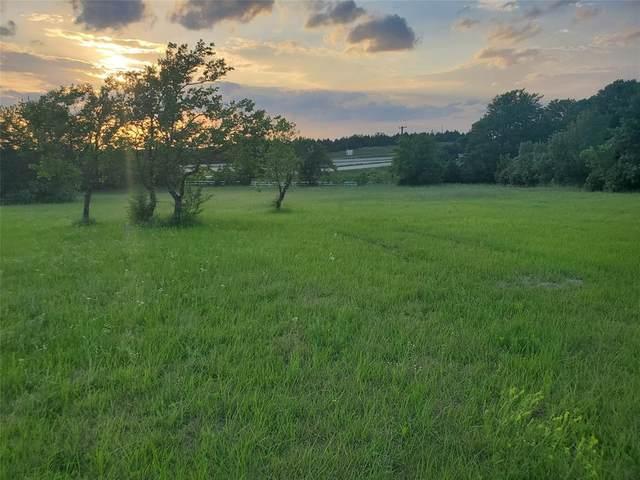 25 Brookhollow Circle, Melissa, TX 75454 (MLS #14587659) :: Feller Realty