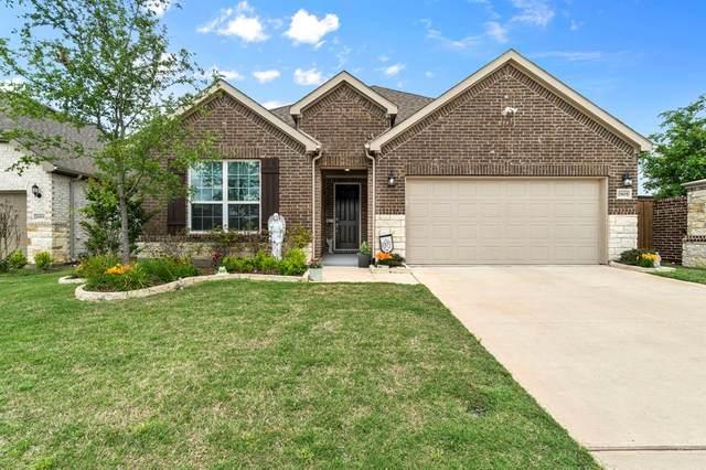 2905 Southampton Drive, Mckinney, TX 75071 (MLS #14588351) :: Robbins Real Estate Group